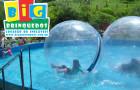 Piscina para Water Ball / Up Ball - Foto 3