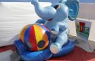 Pula Pula Elefante - Foto 1