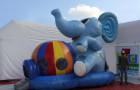 Pula Pula Elefante - Foto 2